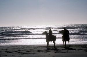corpus christi beach horse back riding